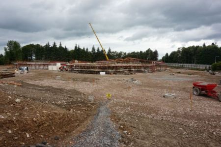 The school emerges - August 2015